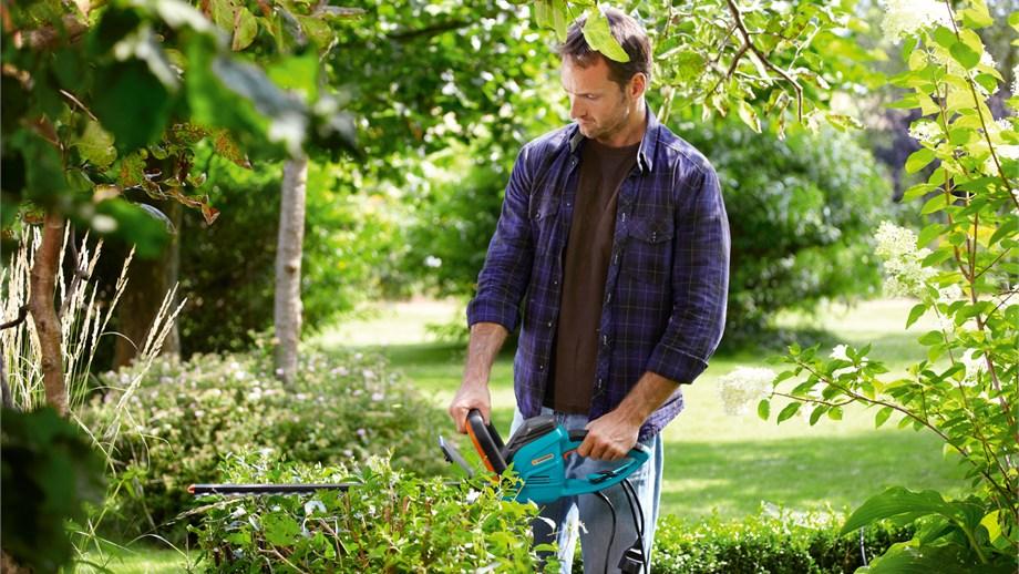 ¿Las ramas no te dejan ver el paraíso de tu jardín?